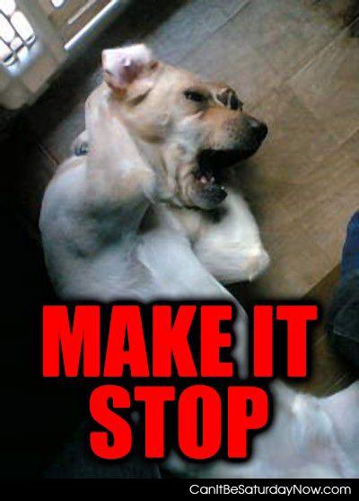Dog stop