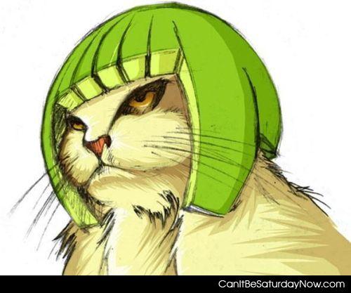 Lime helmet