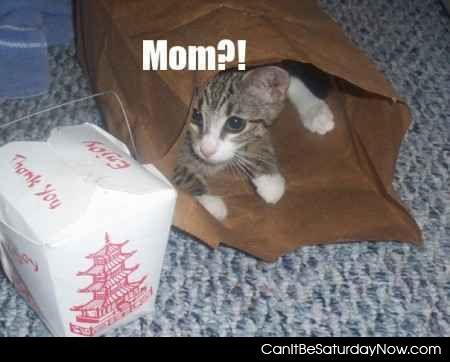 Mom food