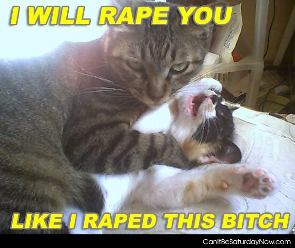 Cat rape