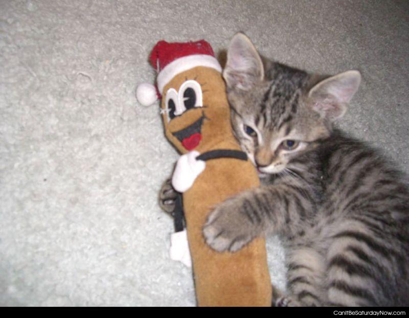 Hanky kitty