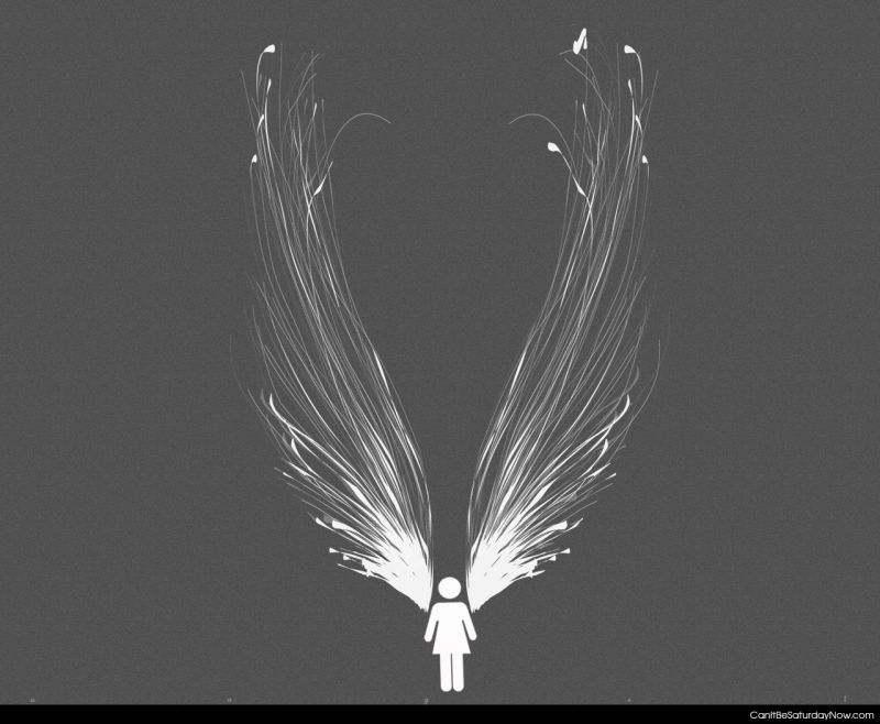 Woman wings