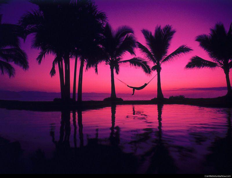 Purple relax