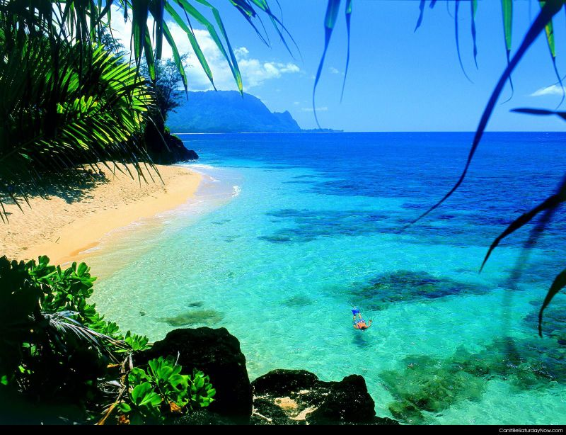 Clear water snorkel
