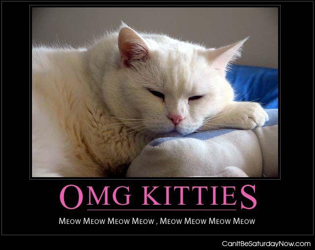 Omg meow meow