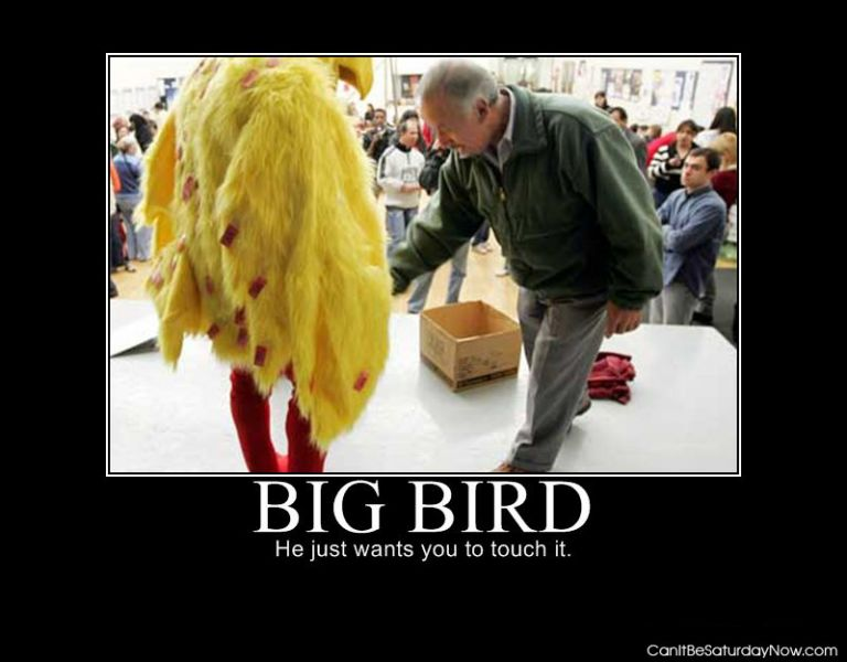 Big bird touch