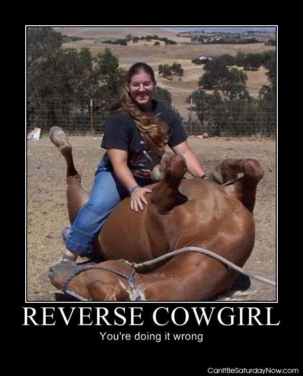 Reverse Cow Girl