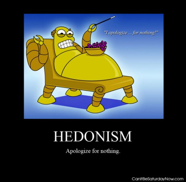 Hedonism sorry