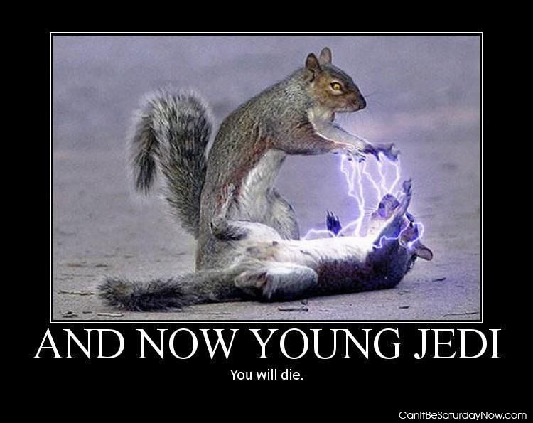 Jedi kill squirrel
