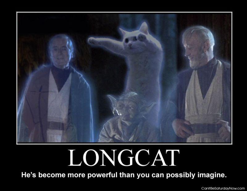 Longcat powerful