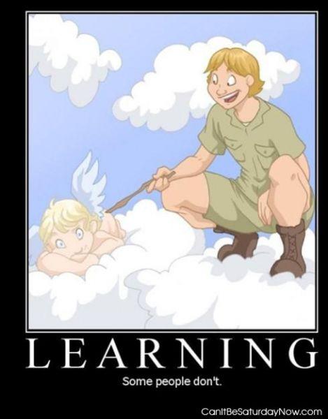 Learn steve
