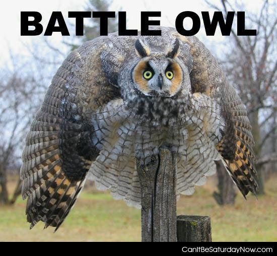 Battle Owl
