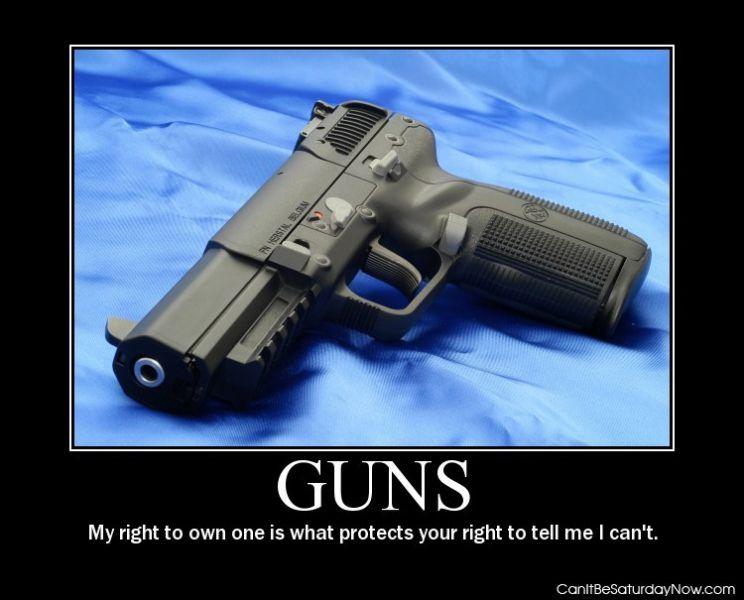Guns protect