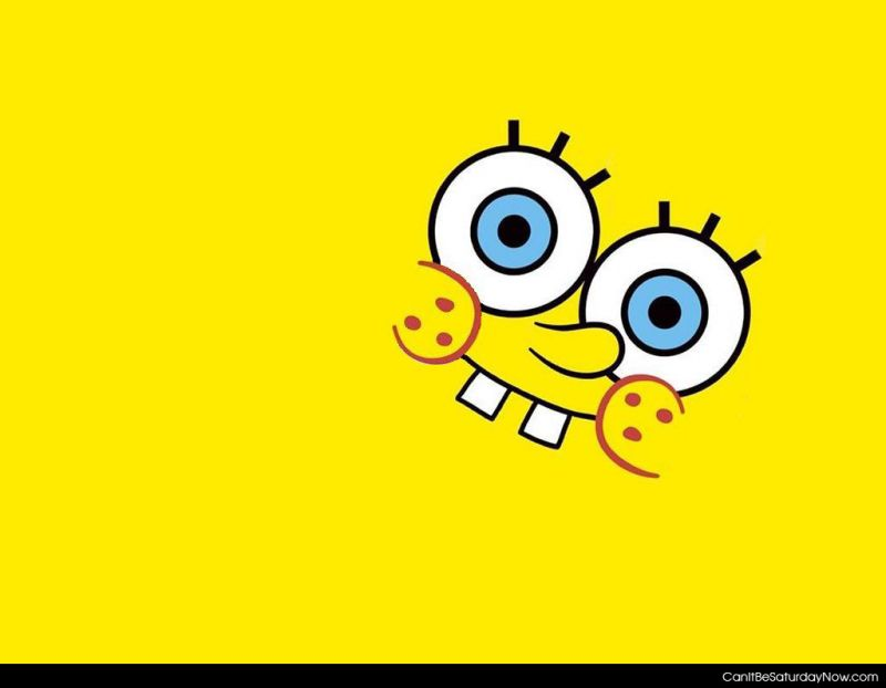 Sponge face