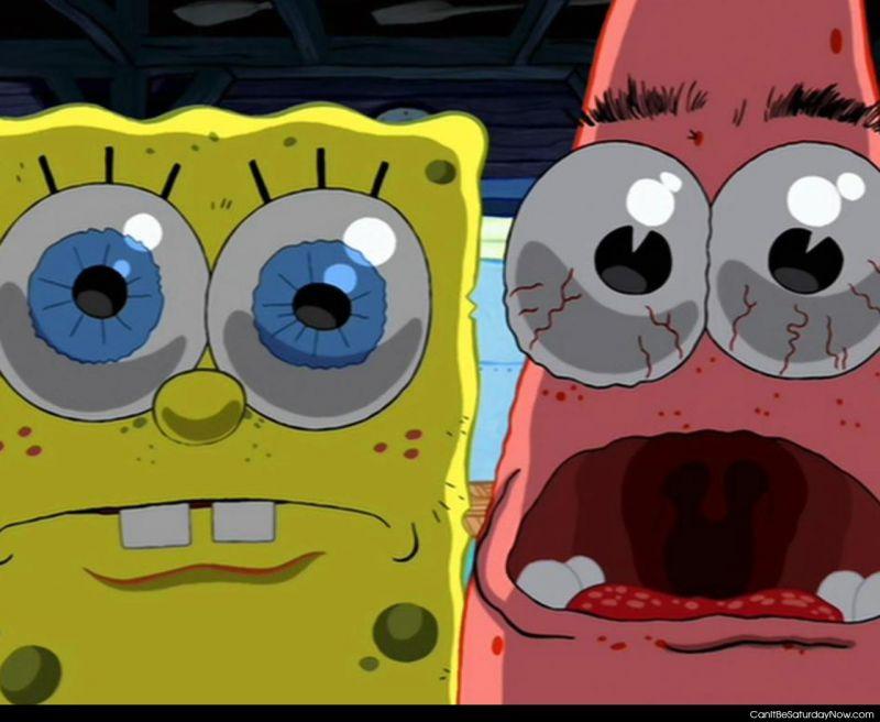 Sponge stare
