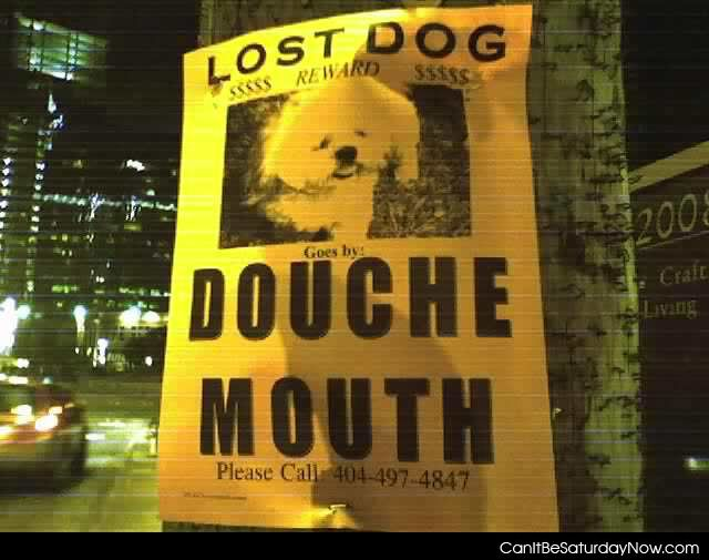 Douche dog