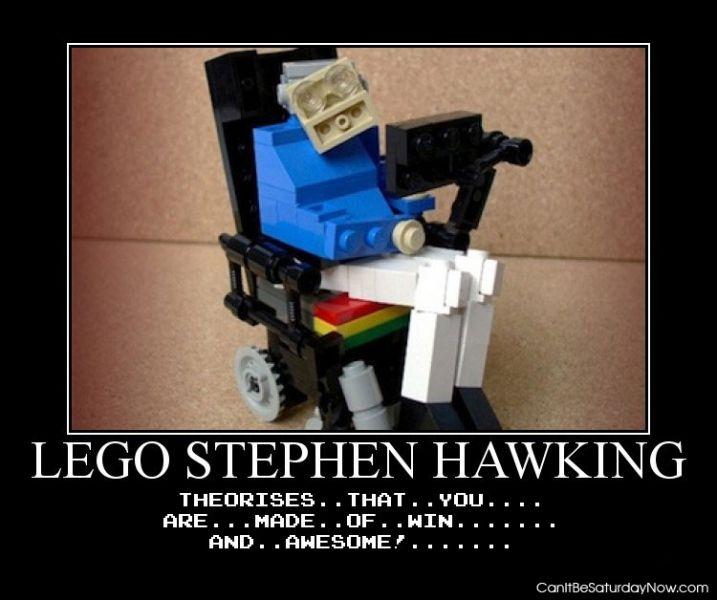 Lego hawking