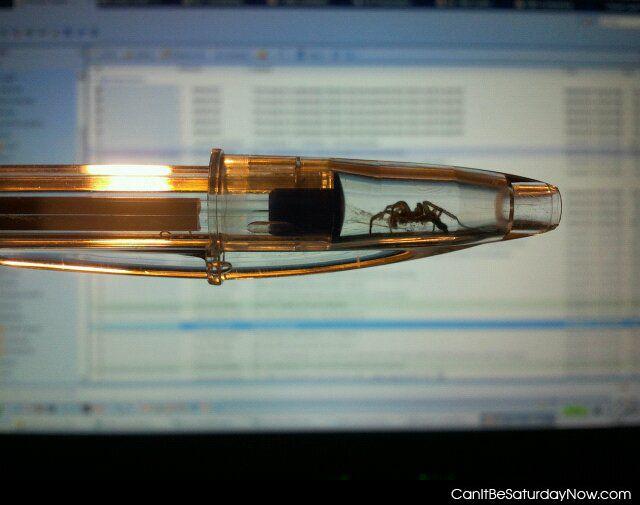 Spider pen