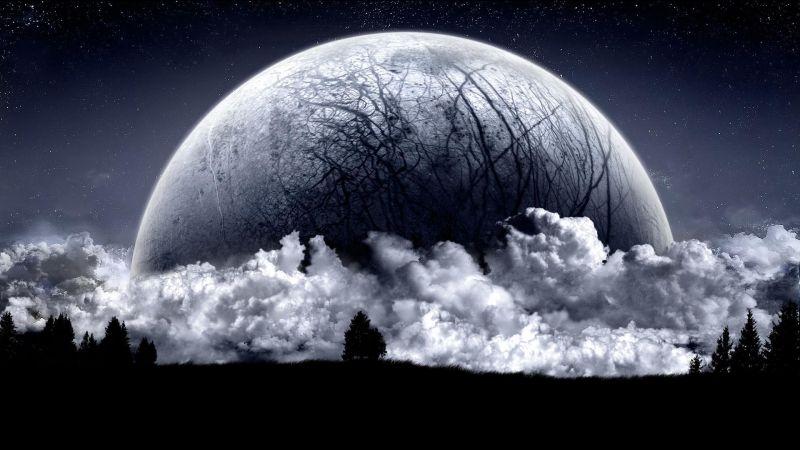 Odd Moon