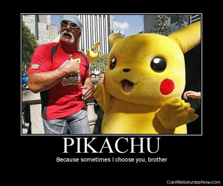 Hulk Hogen Pikachu