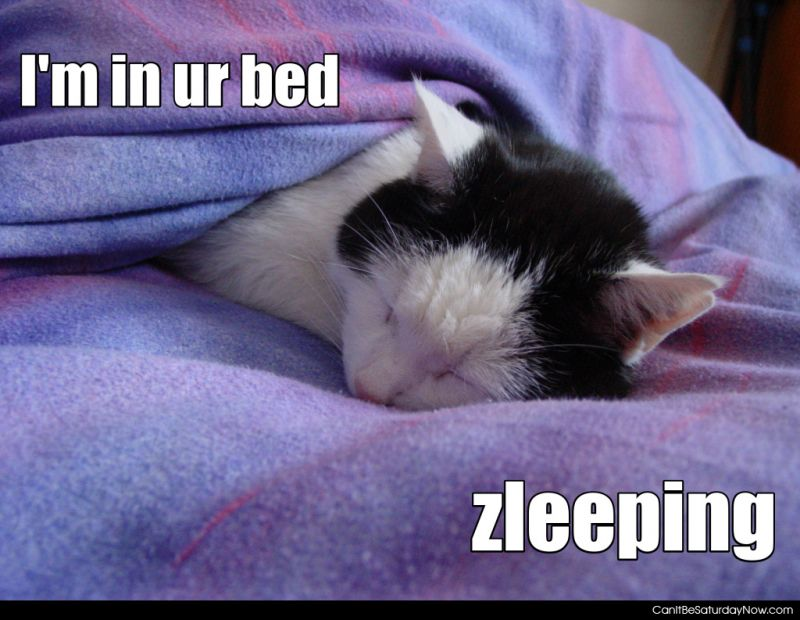 Your bed zleeping