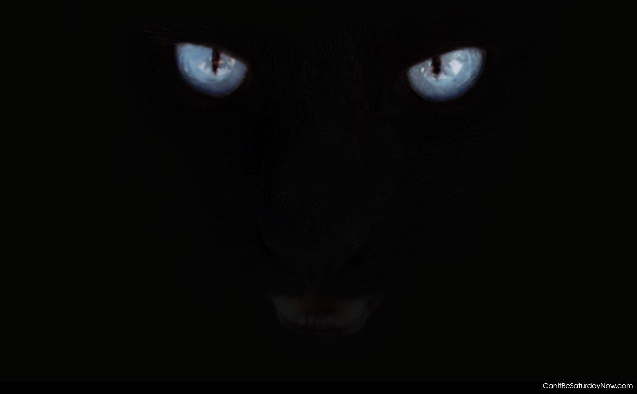 углекислотных баллонов фото пантера на черном фоне прописаны остальные члены